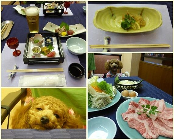 わんパラ食事2-1.jpg