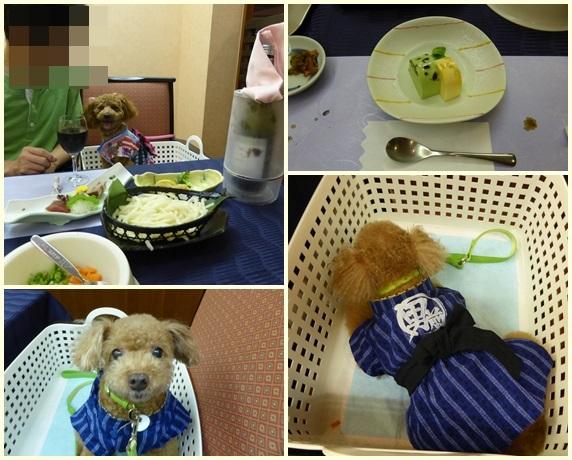 わんパラ食事2-2.jpg