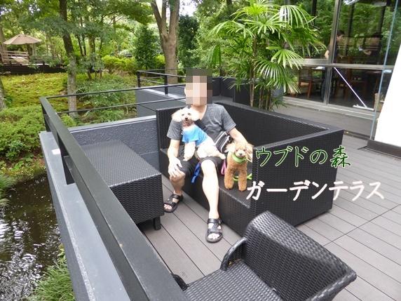 ガーデンテラス (2).JPG