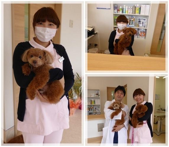 Ms.Shimada.jpg