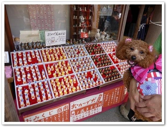 おかげ犬.jpg