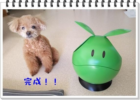 なんでもハロ(5).JPG
